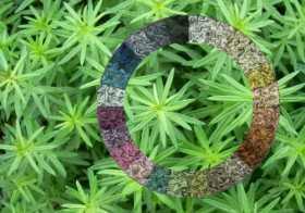 Colores en armonia con la naturaleza